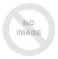 FORCE blatník TRIS na prednú vidlicu, plast, čierny